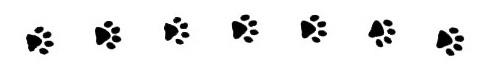 paws-print-row
