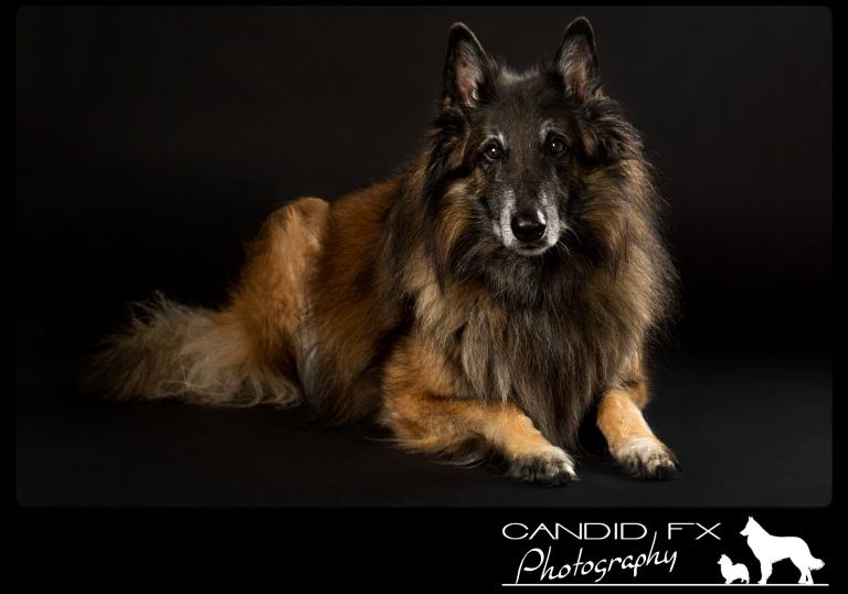 Loki 1 Candid FX Photography